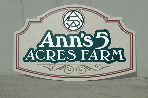 ANNS5A~1